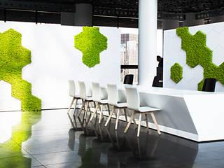 Przestrzenie biurowe i punkt obsługi – projekt wnętrz biurowych z wertykalnym ogrodem SZARA / studio Biurowce Zielony