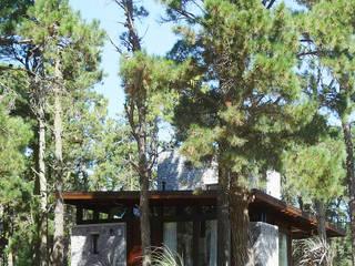 Casa Mar de las Pampas de CRF Arquitectos Moderno