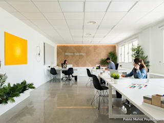 Offices Stefanie - Gala Shoes by Pablo Muñoz Payá Arquitectos Сучасний