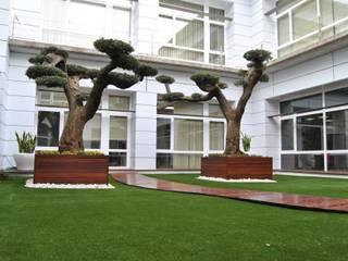 Albergrass césped tecnológico Modern Balkon, Veranda & Teras Yeşil