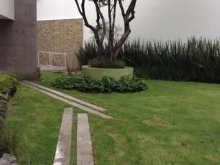 Brenda Vizcaíno - Arquitectura de Paisaje Modern style gardens