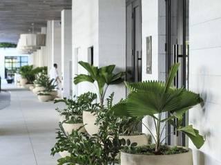 Corredores Pasillos, vestíbulos y escaleras minimalistas de Viviendo Verde Minimalista