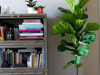 rincones con vida Salones minimalistas de Viviendo Verde Minimalista