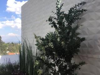 Roof Top Sanje: Jardines de estilo  por Huatan
