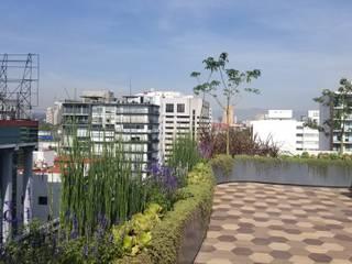Rooftop Polanco: Techos planos de estilo  por Huatan