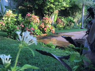 Productores de plantas Concepto Verde 庭院