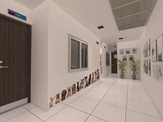 Dima Arquitectos s.a.s Modern clinics