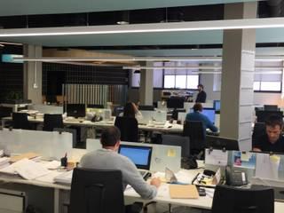 Dasepa Construcciones y reformas en Madrid Office buildings Wood-Plastic Composite Green
