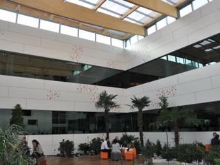 Moderne Bürogebäude von Dasepa Construcciones y reformas en Madrid Modern