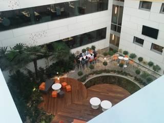 Dasepa Construcciones y reformas en Madrid Office buildings Wood White