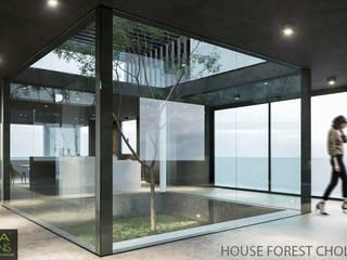 FOREST HOUSE CHOLUL, YUCATÁN: Jardines de estilo  por AIDA TRACONIS ARQUITECTOS EN MERIDA YUCATAN MEXICO,