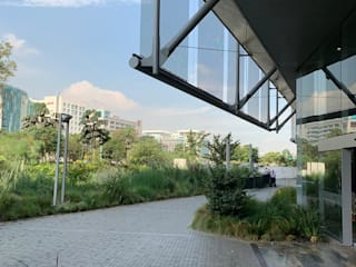 Helecho SAS สวนหน้าบ้าน