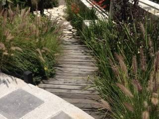 RESIDENCIAL | CASA UNIFAMILIAR TECAMACHALCO: Jardines de piedra de estilo  por Tk arquitectura, Moderno