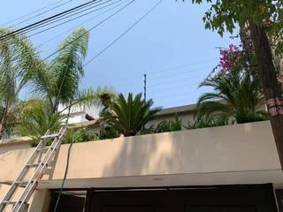 MANTENIMIENTO DE ESPACIOS Jardines modernos de JARDINERIA EMPRESARIAL.COM.MX Moderno