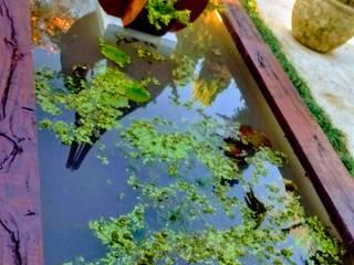 de Estudio Gardenia Interiorismo Paisajismo
