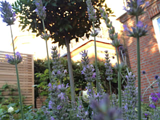 Front garden by Landscaper in London Classic