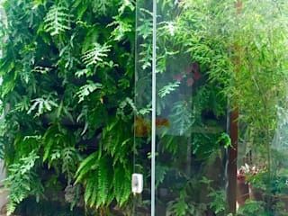 Parede Verde: Jardins de inverno  por Luciana Rossetti Paisagismo