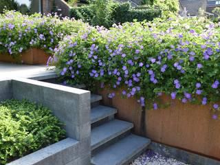by Dutch Quality Gardens, Mocking Hoveniers Modern