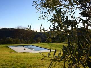 Hồ bơi trong vườn theo joão navas arquitectos, Hiện đại