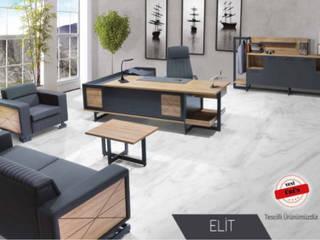 ofis makam takımı tela ofis mobilyaları Endüstriyel