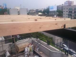 Diseño y Construcción de Roof Garden en Narvarte Balcones y terrazas modernos de MSG Architecture SA DE CV Moderno Compuestos de madera y plástico