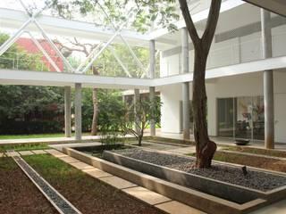 SUNSHIP:  Garden by imago architecture+design,
