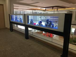 See Through Aquarium for Commercial by Seazone Innovative Sdn Bhd Minimalist