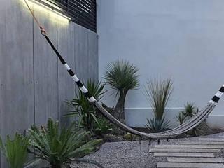 Casa Ventanal Cholula de Plántula México Escandinavo