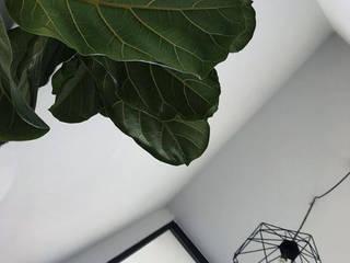 Casa Ventanal Cholula Pasillos, vestíbulos y escaleras escandinavos de Plántula México Escandinavo