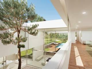 Otto Medem Arquitecto vanguardista en Madridが手掛けた庭