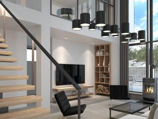 Minimalist living room by (DZ)M Интеллектуальный Дизайн Minimalist