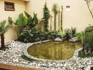 Cattleya jardinería JardimPlantas e flores