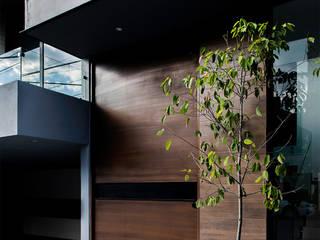 Casa Varsovia de Nova Arquitectura