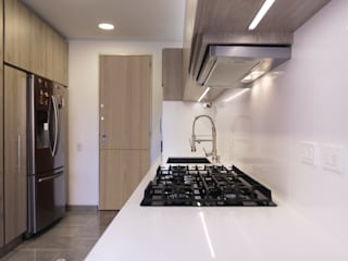 Gamma Minimalist kitchen Wood
