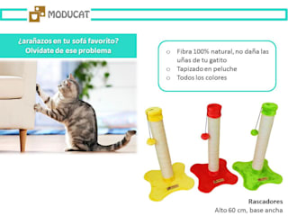 Rascadores para gato, base piso de ModuCat Estructuras modulares para gatos Moderno