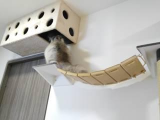 Adecuacion de espacios para gatos (Gatificacion):  de estilo  por ModuCat Estructuras modulares para gatos,