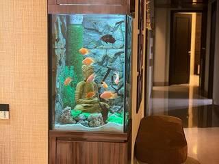 """""""Buddha"""" themed Custom Aquarium.:  Living room by Aquarist,"""