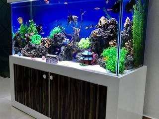 "Beautiful ""Custom Aquarium"" at Dental Clinic:  Clinics by Aquarist,"