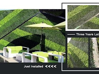 Customized Design Artificial HEDGES WALL Ruang Komersial Tropis Oleh Sunwing Industries Ltd Tropis
