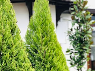 Jardines de estilo rústico de konseptDE Peyzaj Fidancılık Tic. Ltd. Şti. Rústico