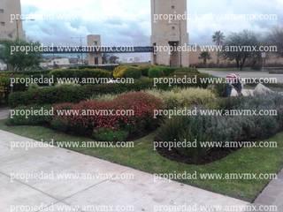 Mantenimiento Integral y riego de jardines fraccionamiento Punta del Este 2009 al 2016 Paisajismo de Alto Nivel Espacios comerciales de estilo moderno