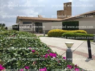 Mantenimiento Integral y riego de jardines fraccionamiento Punta del Este 2009 al 2016 Paisajismo de Alto Nivel Centros comerciales de estilo moderno