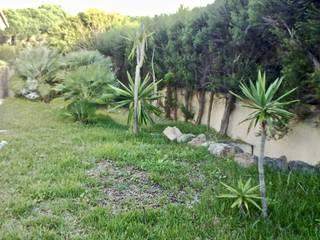 Requalificação de jardim: Jardins  por Greenchallenge,