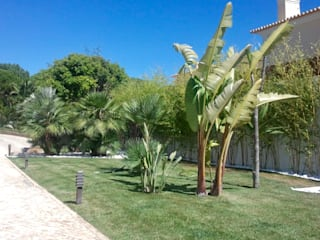 Reabilitação de jardim Jardins modernos por Greenchallenge Moderno