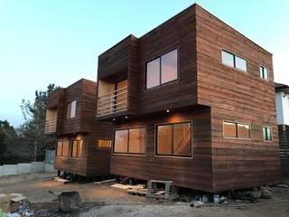 Loberia Arquitectura