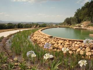 モダンスタイルの プール の Rigenera モダン