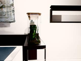 Niwa design Frédéric TABARY Maisons minimalistes