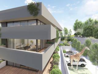 by Terra Arquitectos