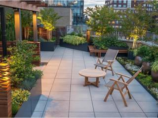 Nhà phố tinh tế:  Zen garden by Nguyen Hung Architects, Modern