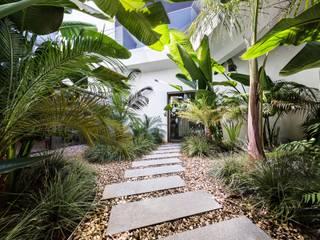 Tropical style garden by Jardíssimo Tropical